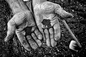 una-vida-trabajando-la-tierra